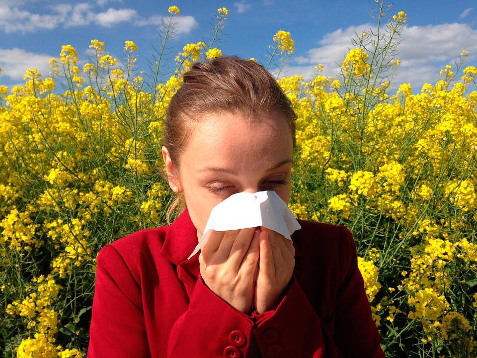 En primavera, sin alergias